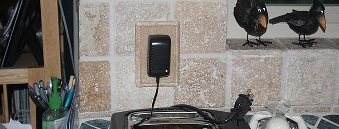This charger, plugged into a wall outlet, charges both the transmitter and the pterodactyl.