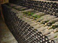 Name: Napa 2008 040.jpg