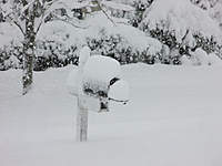 Name: DSCF1535.jpg