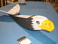 Name: Eagle 1.jpg Views: 1137 Size: 158.2 KB Description: