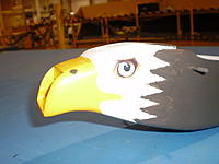 Name: Eagle 4.jpg