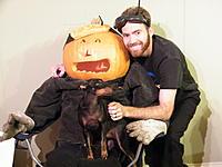 Name: DSCF9231.jpg Views: 116 Size: 136.2 KB Description: Me, my co-pilot and my dog...