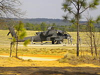 Name: DSCN0606.jpg