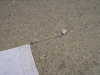 Name: Picture 016.jpg