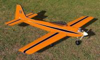 Name: KwikFliT1.jpg Views: 237 Size: 86.0 KB Description: tapered wings version (Mark IV)