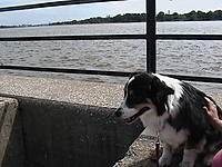 Name: IMGA0567.jpg