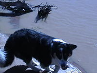 Name: IMGA0507.jpg