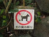 Name: Hope's Photos 649.jpg