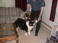 Name: DSCN4698.jpg