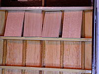Name: DSCN5371.jpg
