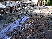Name: DSCN6219 (1).JPG Views: 14 Size: 692.1 KB Description: You may remember what our deck LOOKED LIKE . Sure they clean up. Then you clean up , move deck furn. and clean up again .