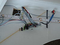Name: insitu.jpg