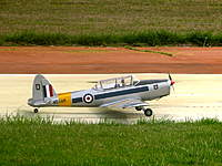Name: luke_chipmunk.jpg