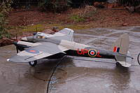Name: steven_mosquito.jpg