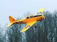 Name: kai_chipmunk.jpg