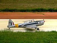 Name: Chipmunk1.jpg