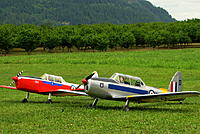 Name: Chipmunk3.jpg