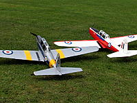 Name: Chipmunk4.jpg