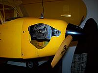 Name: piper1-8.jpg