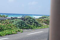 Name: Vacation 165.jpg Views: 119 Size: 184.9 KB Description: Cozemel surf