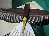 Name: My Eagle 005.jpg Views: 417 Size: 104.5 KB Description: