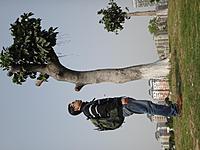 Name: DSC01250.jpg Views: 276 Size: 210.4 KB Description: