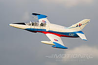 Name: Freewing L-39 4.jpg