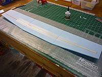 Name: P1010426.jpg
