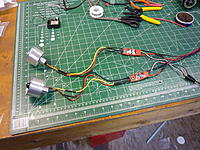 Name: P1010496.jpg
