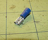 Name: P1010330.jpg