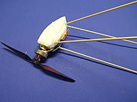 Name: shrimp35wichtig!.jpg Views: 110 Size: 377.9 KB Description: