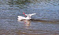 Name: RN EK 07.jpg Views: 16 Size: 388.2 KB Description: Richard's Ekranoplan at Lake Dallas