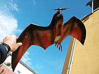 Name: pterosaur 2.jpg