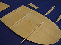 Name: scout19.jpg Views: 307 Size: 423.0 KB Description: outer ribs are shortened after glueing