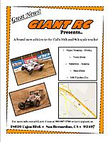 Name: Giant RC track flyer.jpg