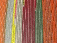 Name: f070414102700_0640.jpg Views: 206 Size: 90.8 KB Description: Flowerfields along the Zwartelaan in Lisse