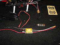 Name: DSCN3590.jpg