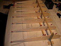 Name: DSCN3262.JPG