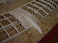 Name: DSC09400.jpg