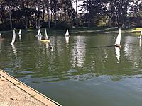 Name: IMG_0375.jpg Views: 68 Size: 302.9 KB Description: Wind can be very light on Spreckels Lake even though we are only 1 mile from the Pacific Ocean.