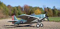 Name: a9810021-182-f4f-wildcat-13.jpg