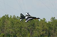 Name: t50-fly-tripple.jpg Views: 89 Size: 109.3 KB Description: