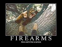 Name: firearms.jpg