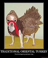 Name: orientalturkey.jpg
