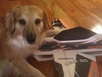 Name: 2012-08-02 21.36.39.jpg Views: 52 Size: 138.1 KB Description: Dog on crack! Yak that is.......