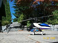 Name: Hausler 450 Pro TT - 1.jpg Views: 155 Size: 176.9 KB Description: