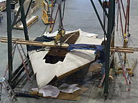 Name: DSC01420.jpg