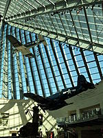 Name: DSC00650.jpg