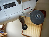 Name: DSCN1104.jpg
