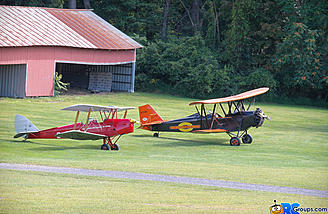 New Standard and the Tiger Moth sitting pretty
